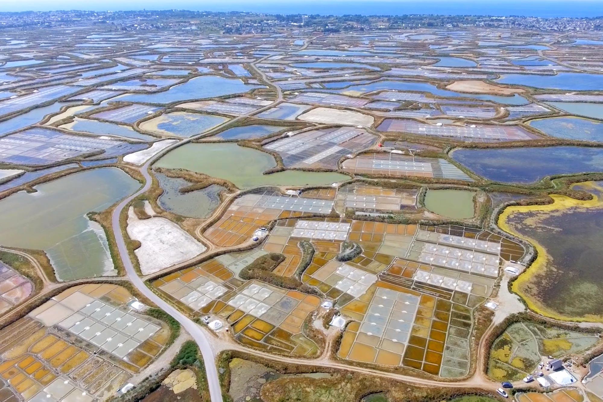 Savoir-Faire - Loire-Atlantique Développement